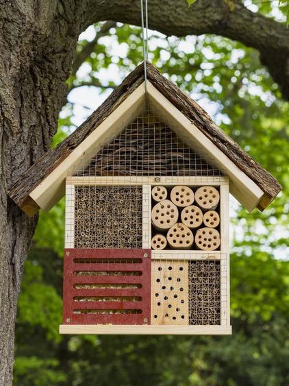 Geflügelte Hotels: Das Wichtigste zum Bau von Insektenhotels